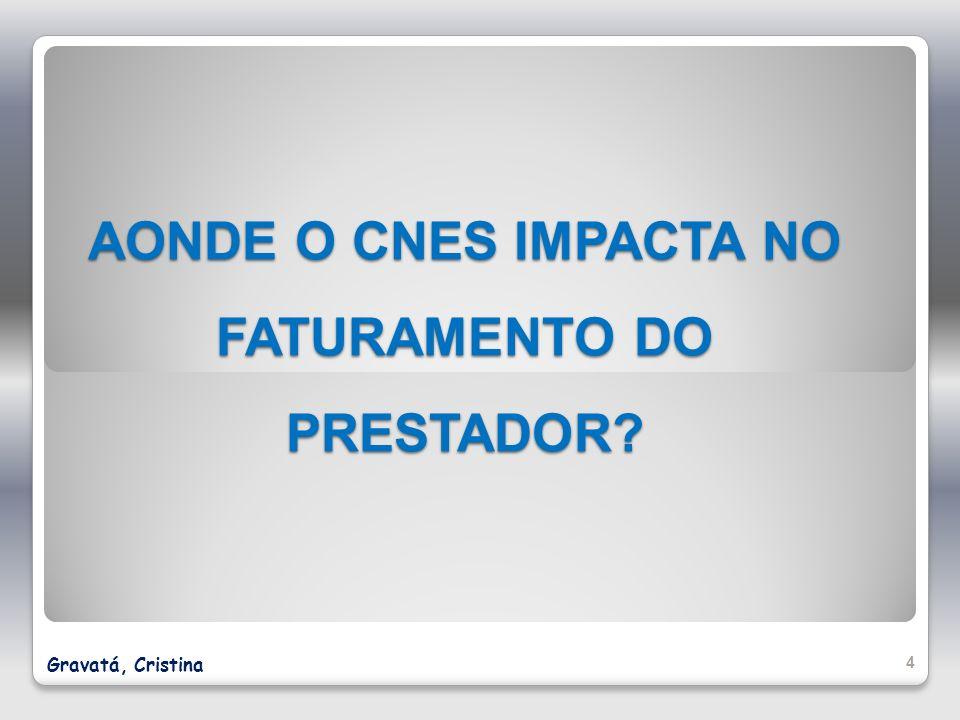 AONDE O CNES IMPACTA NO FATURAMENTO DO PRESTADOR
