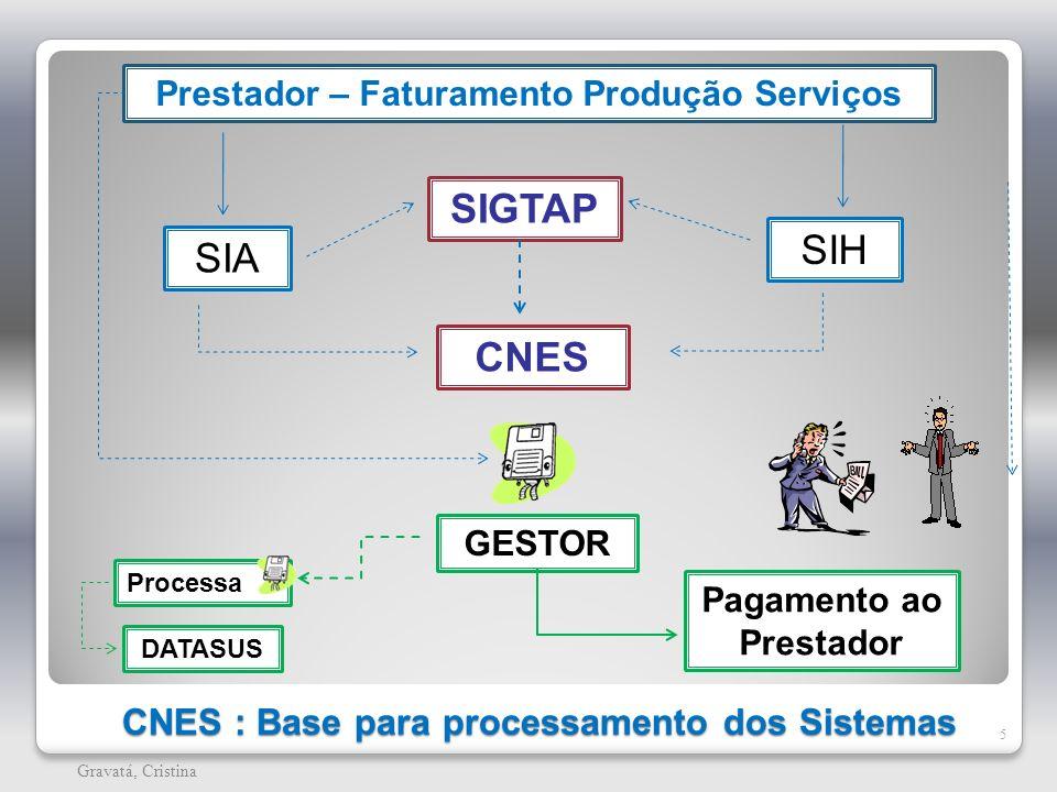 CNES : Base para processamento dos Sistemas