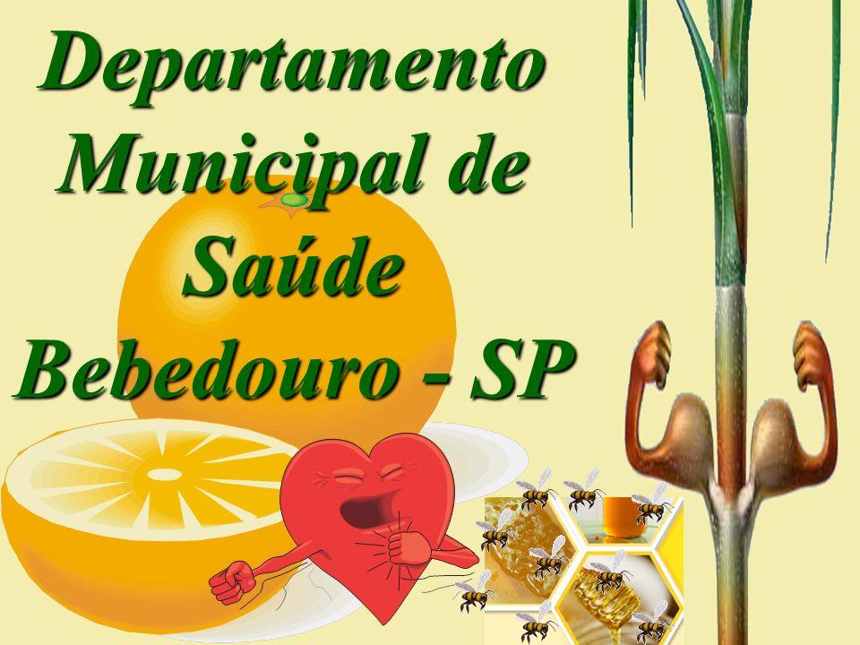 Departamento Municipal de