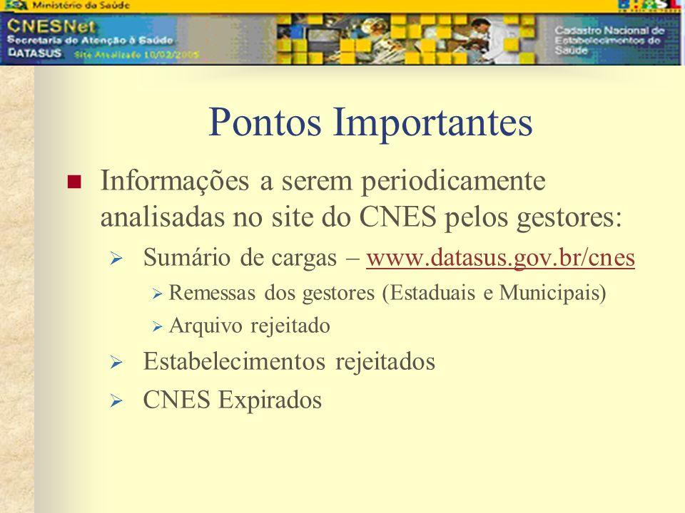 Pontos Importantes Informações a serem periodicamente analisadas no site do CNES pelos gestores: Sumário de cargas – www.datasus.gov.br/cnes.