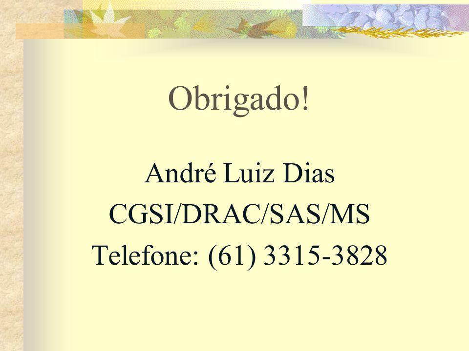 Obrigado! André Luiz Dias CGSI/DRAC/SAS/MS Telefone: (61) 3315-3828