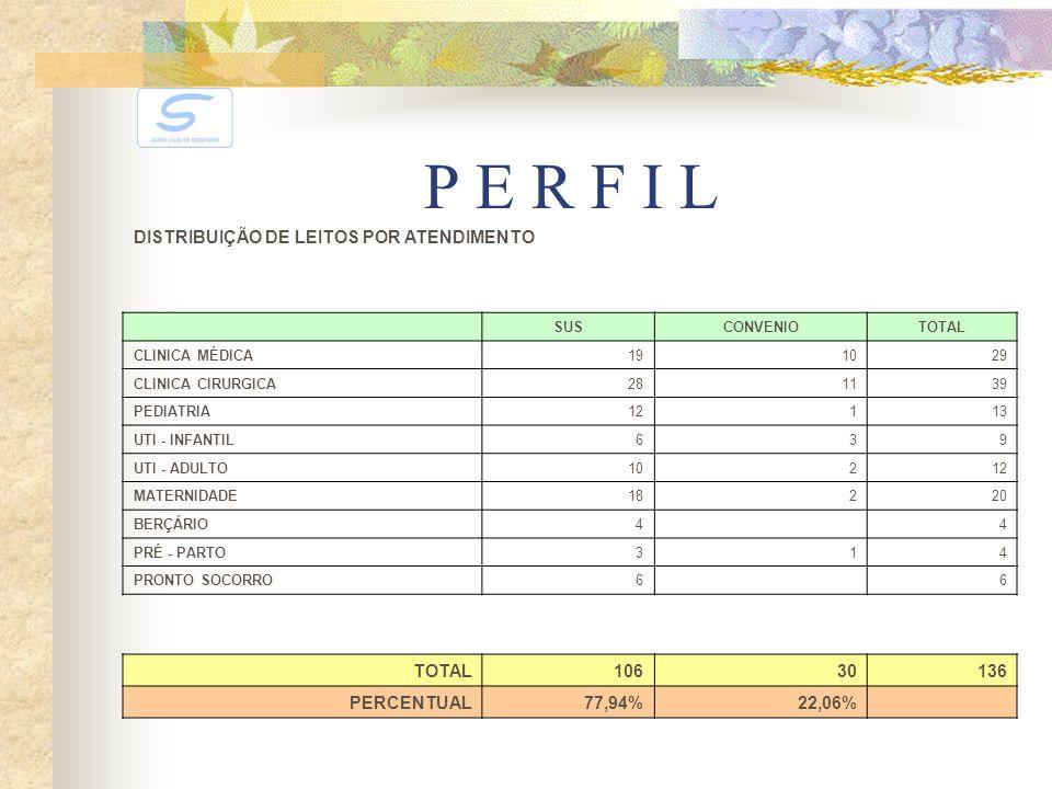 P E R F I L DISTRIBUIÇÃO DE LEITOS POR ATENDIMENTO 106 30 136