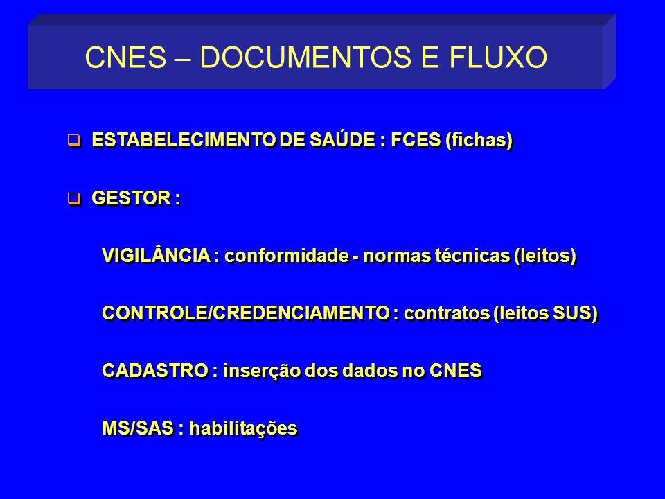 CNES – DOCUMENTOS E FLUXO