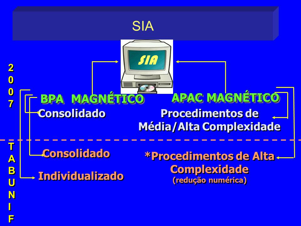 SIA SIA APAC MAGNÉTICO BPA MAGNÉTICO Consolidado Individualizado