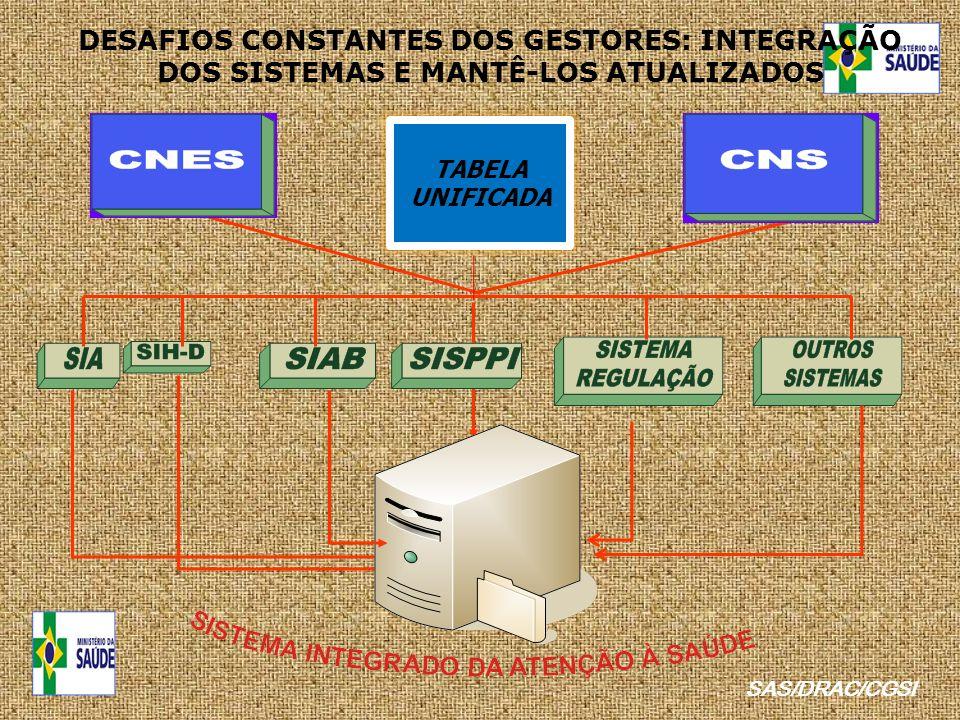 DESAFIOS CONSTANTES DOS GESTORES: INTEGRAÇÃO DOS SISTEMAS E MANTÊ-LOS ATUALIZADOS