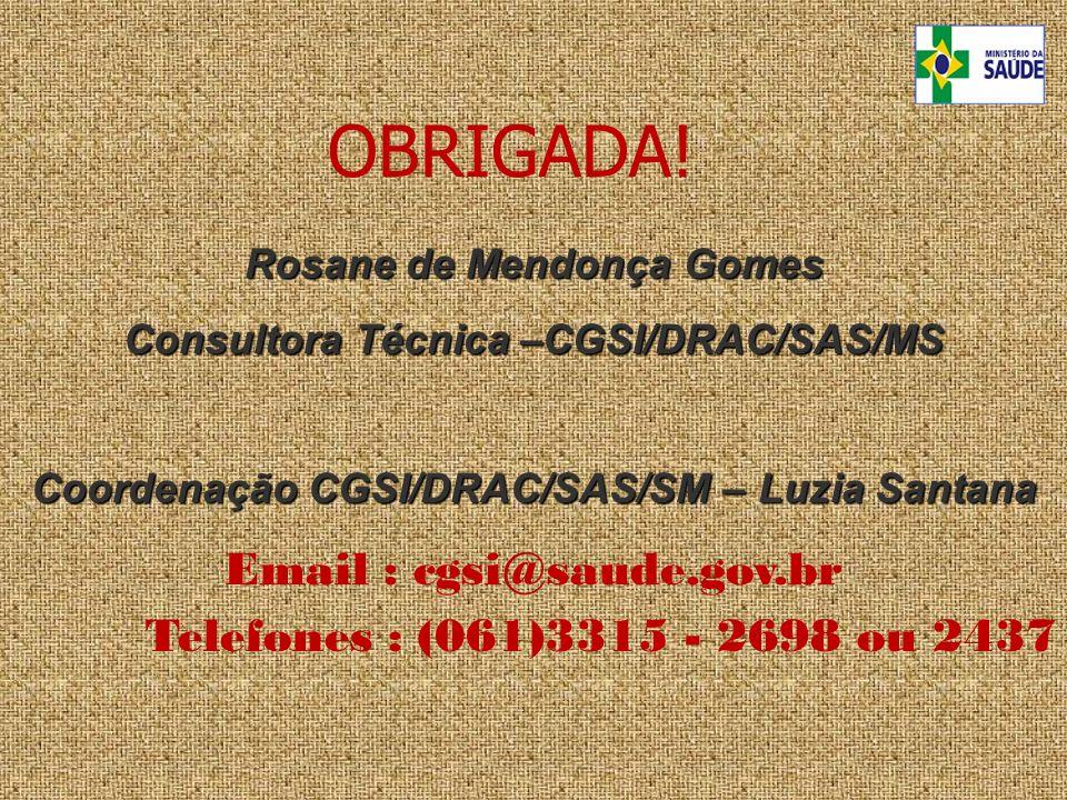Rosane de Mendonça Gomes Consultora Técnica –CGSI/DRAC/SAS/MS