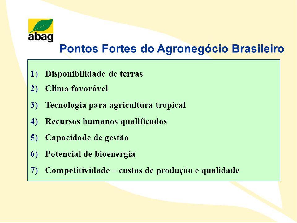 Pontos Fortes do Agronegócio Brasileiro