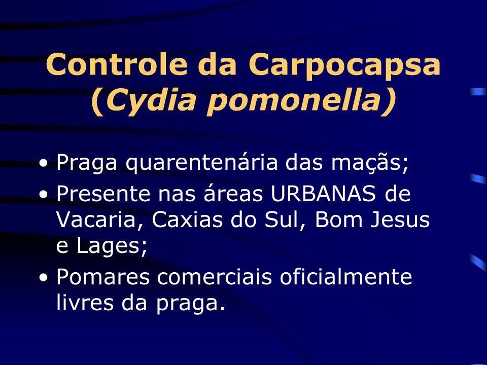 Controle da Carpocapsa (Cydia pomonella)