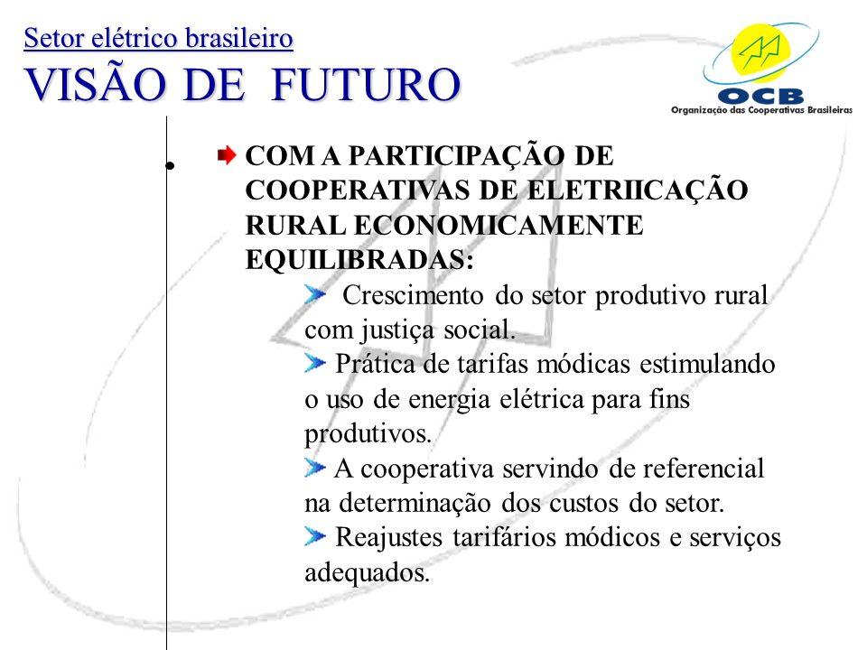 Setor elétrico brasileiro VISÃO DE FUTURO