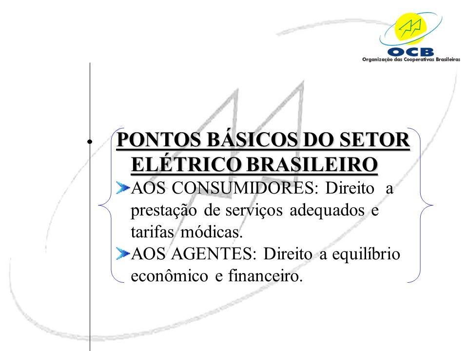 PONTOS BÁSICOS DO SETOR ELÉTRICO BRASILEIRO