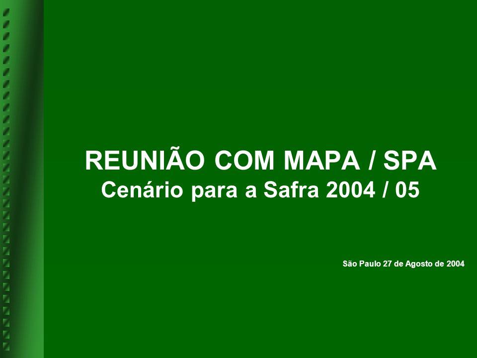 REUNIÃO COM MAPA / SPA Cenário para a Safra 2004 / 05