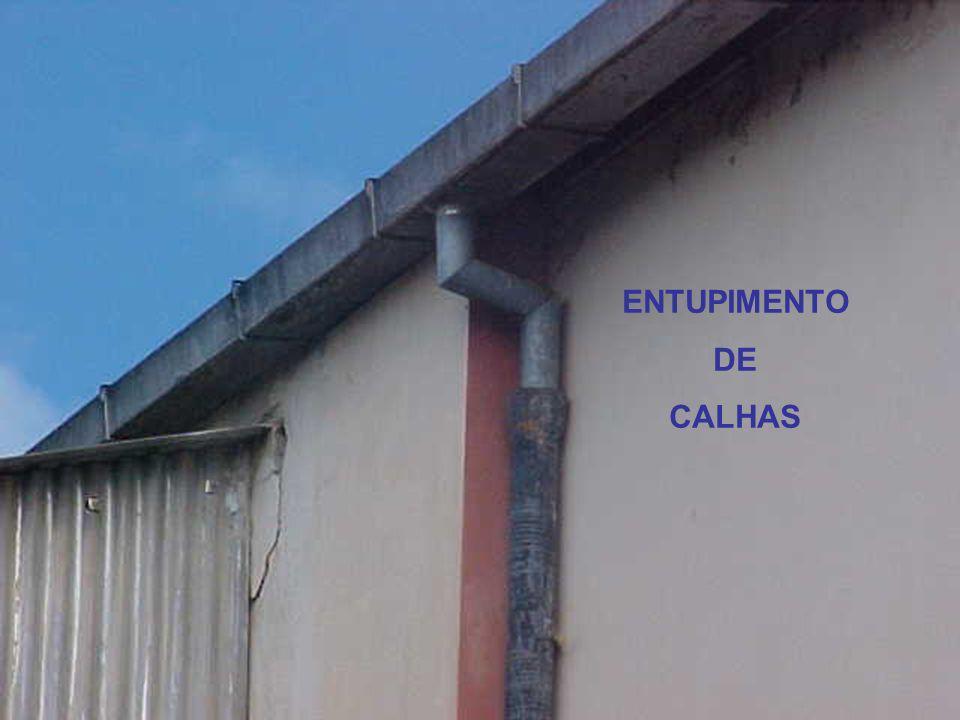ENTUPIMENTO DE CALHAS