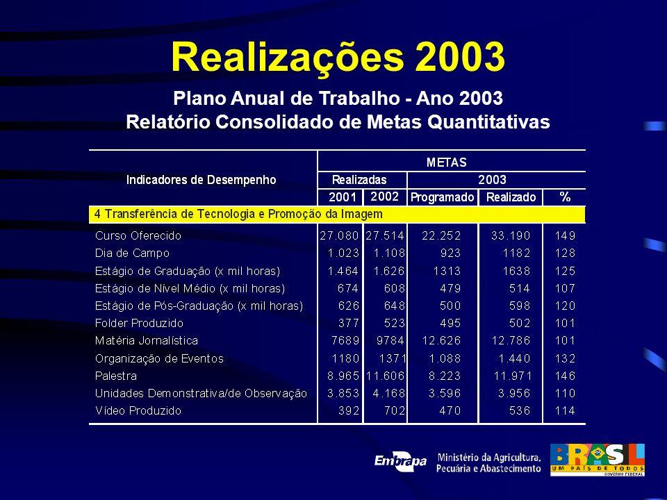 Realizações 2003 Plano Anual de Trabalho - Ano 2003