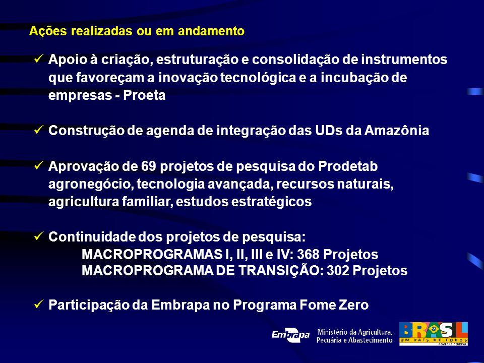 Construção de agenda de integração das UDs da Amazônia