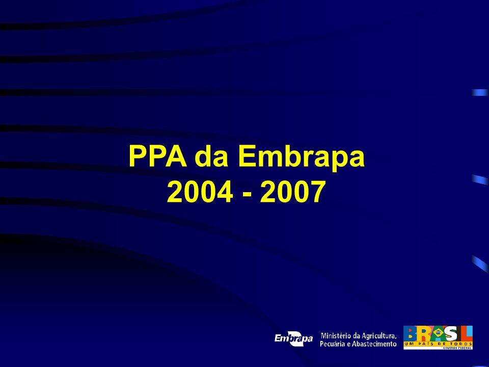 PPA da Embrapa 2004 - 2007