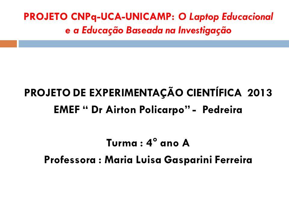 PROJETO DE EXPERIMENTAÇÃO CIENTÍFICA 2013