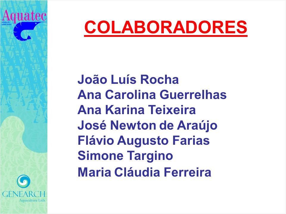 COLABORADORES João Luís Rocha Ana Carolina Guerrelhas