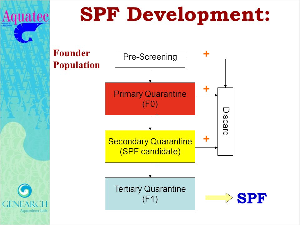 SPF Development: SPF + Founder Population Pre-Screening
