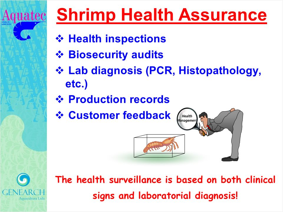 Shrimp Health Assurance