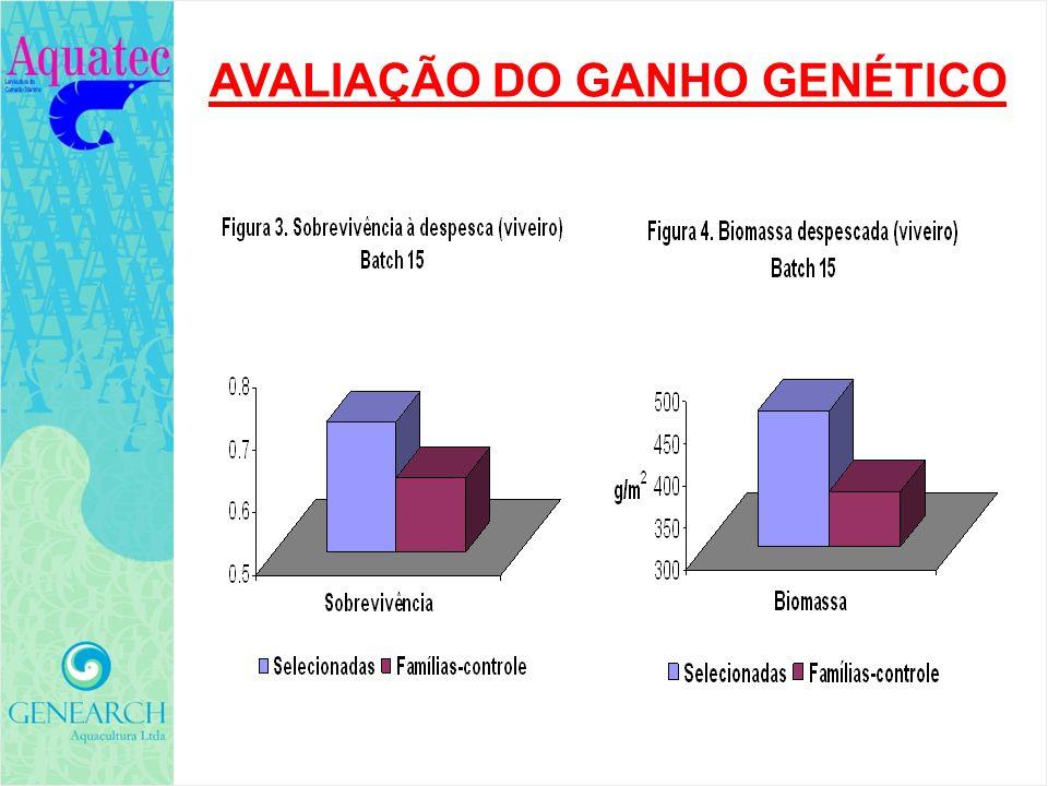 AVALIAÇÃO DO GANHO GENÉTICO