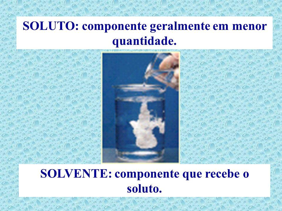 SOLUTO: componente geralmente em menor quantidade.