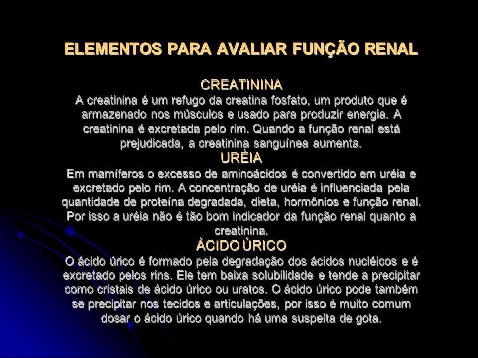 calabacin para acido urico que pasa si tengo el acido urico alto acido urico sintomas y tratamiento natural