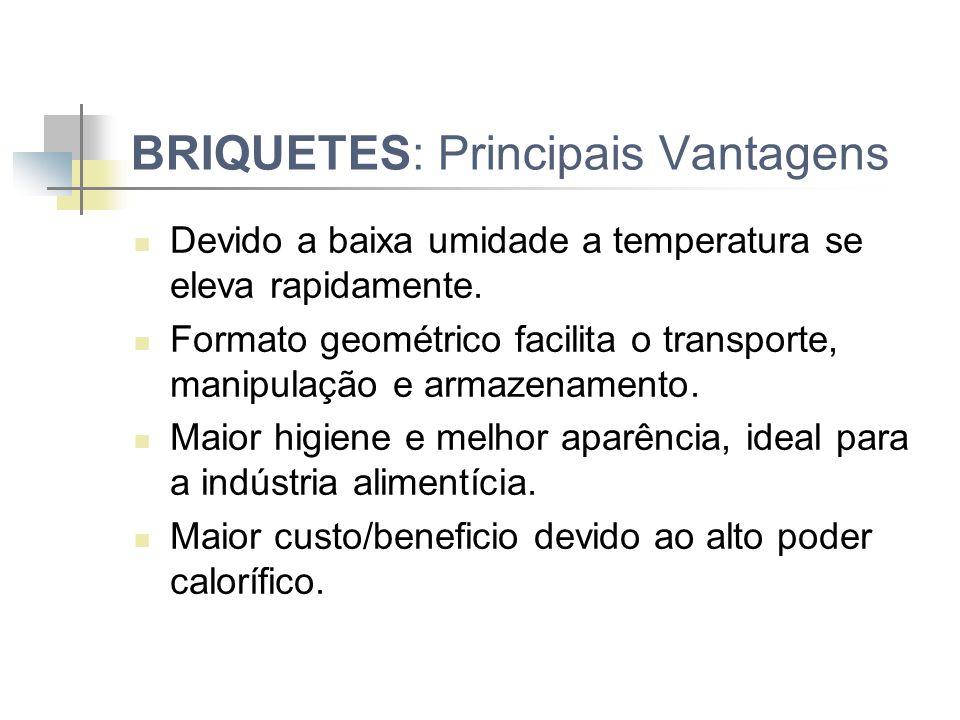 BRIQUETES: Principais Vantagens