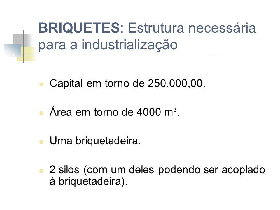 BRIQUETES: Estrutura necessária para a industrialização