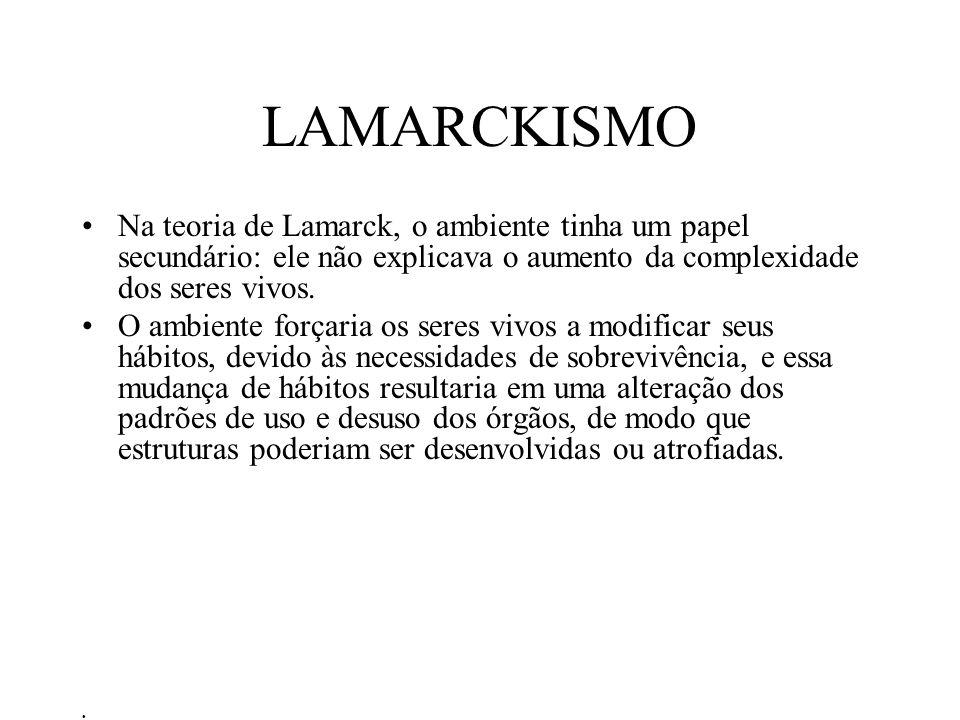 LAMARCKISMO Na teoria de Lamarck, o ambiente tinha um papel secundário: ele não explicava o aumento da complexidade dos seres vivos.