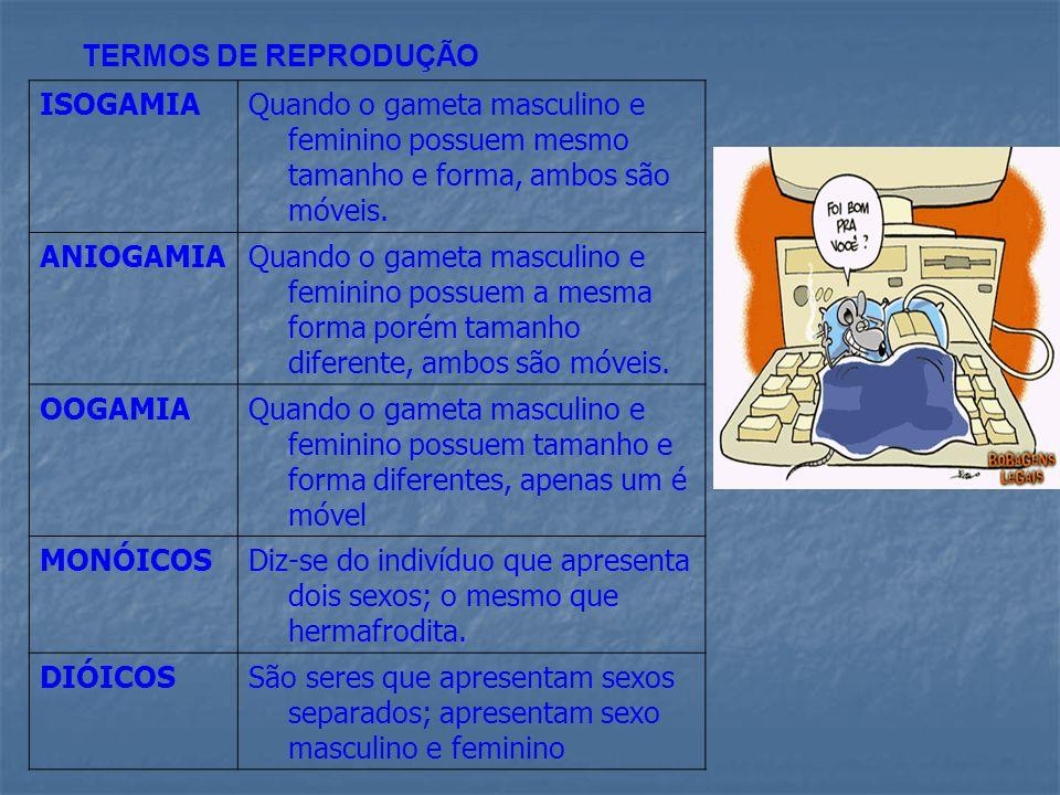 TERMOS DE REPRODUÇÃO ISOGAMIA. Quando o gameta masculino e feminino possuem mesmo tamanho e forma, ambos são móveis.