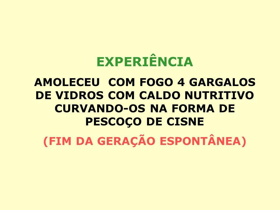(FIM DA GERAÇÃO ESPONTÂNEA)
