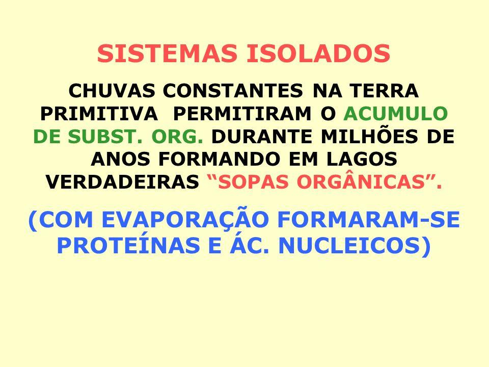 (COM EVAPORAÇÃO FORMARAM-SE PROTEÍNAS E ÁC. NUCLEICOS)