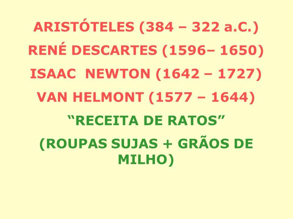 (ROUPAS SUJAS + GRÃOS DE MILHO)