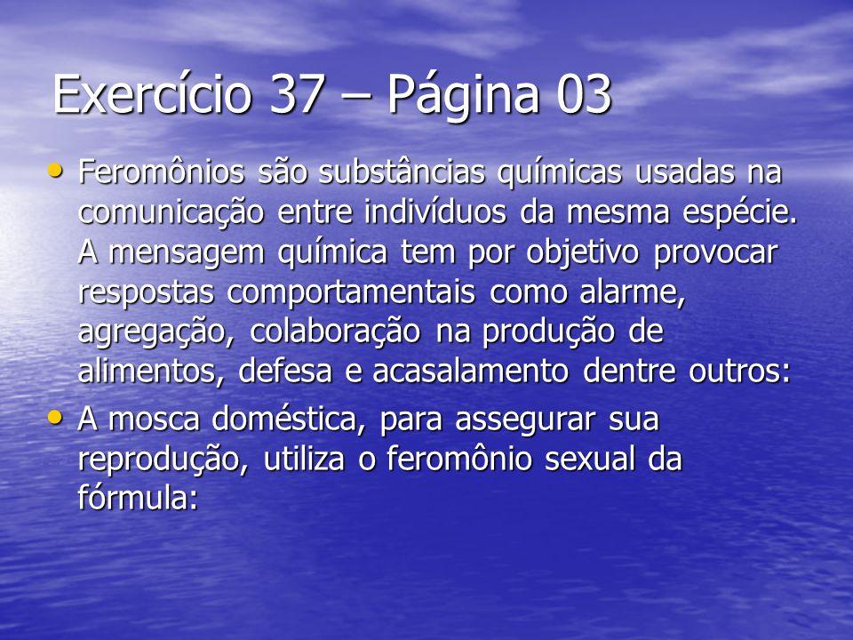 Exercício 37 – Página 03