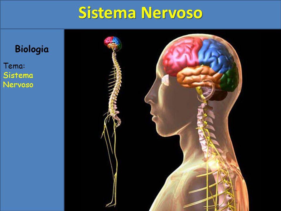 Sistema Nervoso Biologia Tema: Sistema Nervoso