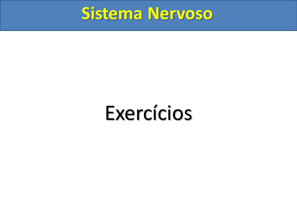 Sistema Nervoso Exercícios
