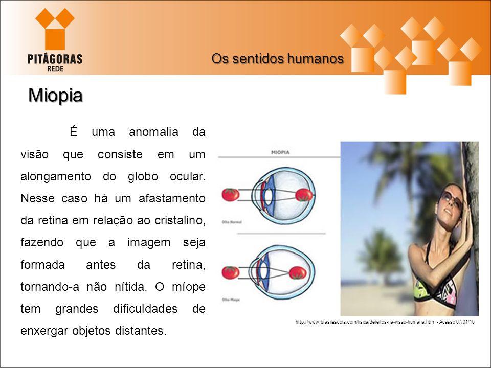Miopia Os sentidos humanos