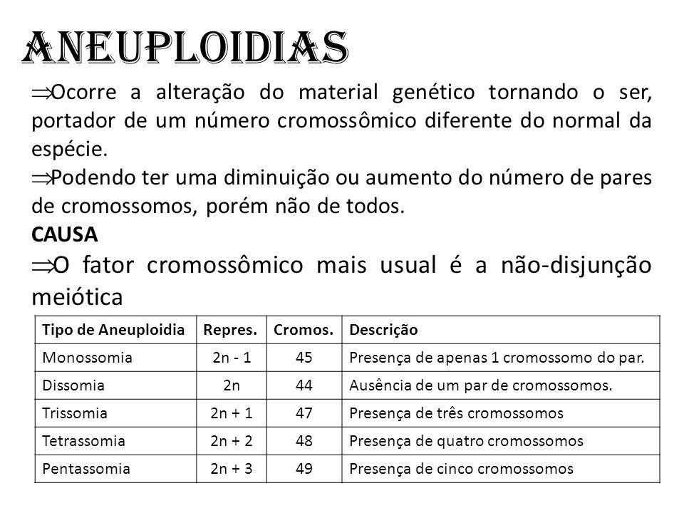 Aneuploidias Ocorre a alteração do material genético tornando o ser, portador de um número cromossômico diferente do normal da espécie.