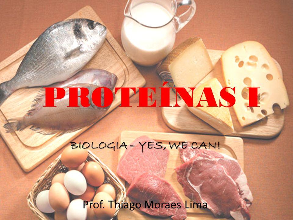 Prof. Thiago Moraes Lima