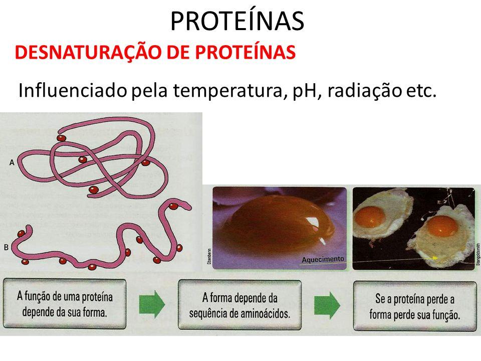 PROTEÍNAS DESNATURAÇÃO DE PROTEÍNAS