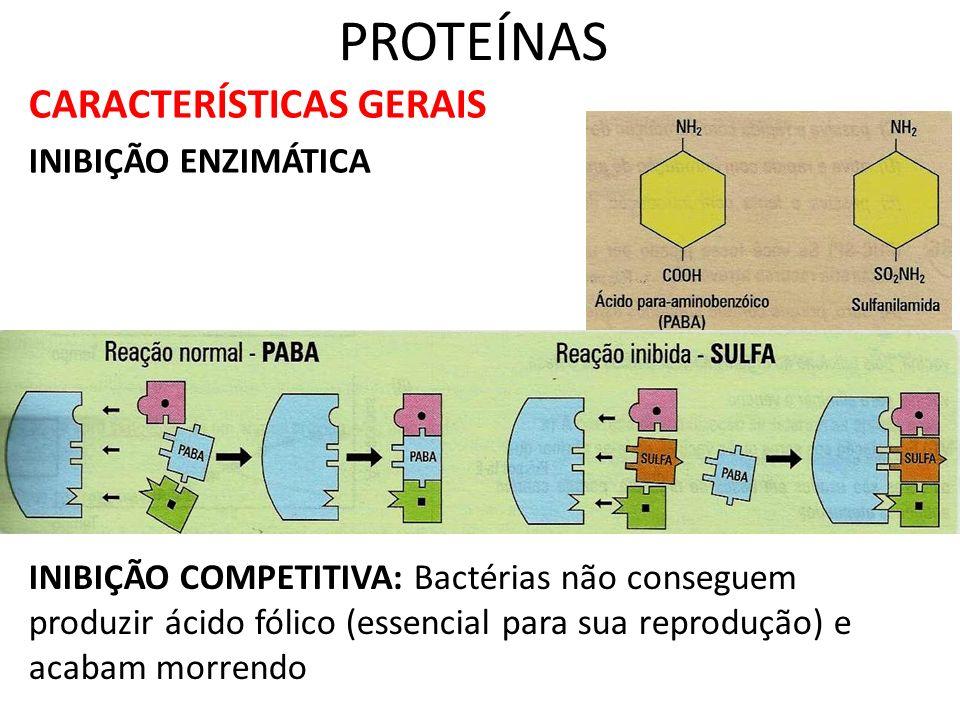 PROTEÍNAS CARACTERÍSTICAS GERAIS INIBIÇÃO ENZIMÁTICA