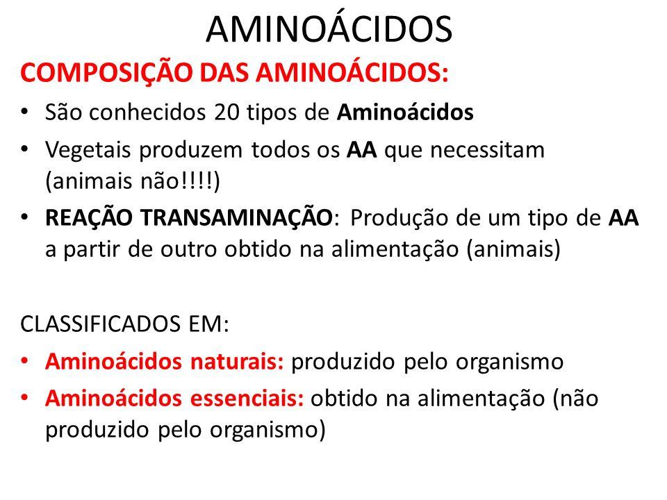 AMINOÁCIDOS COMPOSIÇÃO DAS AMINOÁCIDOS: