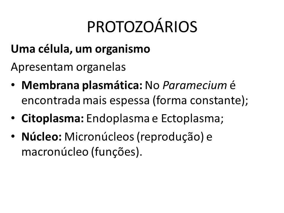 PROTOZOÁRIOS Uma célula, um organismo Apresentam organelas