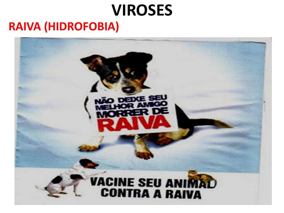 VIROSES RAIVA (HIDROFOBIA)