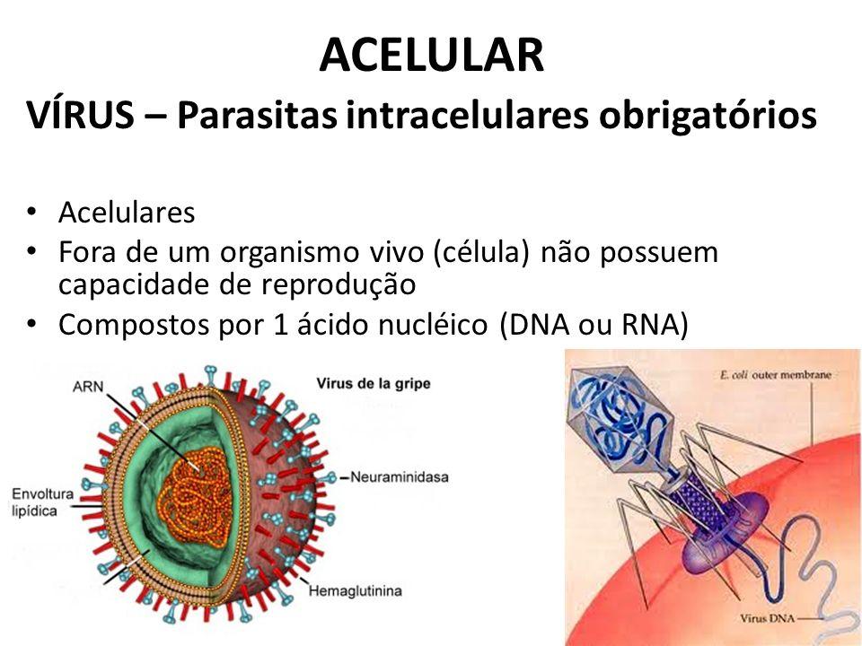 ACELULAR VÍRUS – Parasitas intracelulares obrigatórios Acelulares