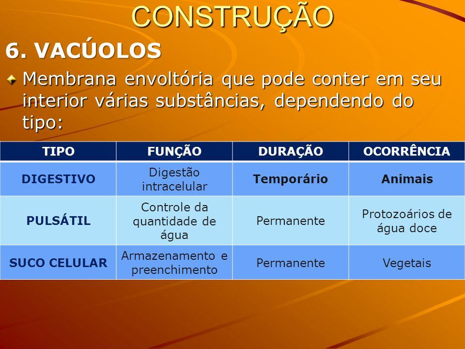 CONSTRUÇÃO6. VACÚOLOS. Membrana envoltória que pode conter em seu interior várias substâncias, dependendo do tipo: