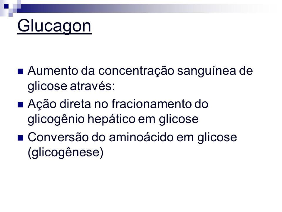 Glucagon Aumento da concentração sanguínea de glicose através: