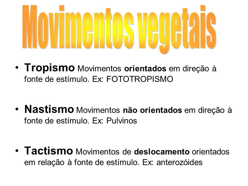 Movimentos vegetais Tropismo Movimentos orientados em direção à fonte de estímulo. Ex: FOTOTROPISMO.