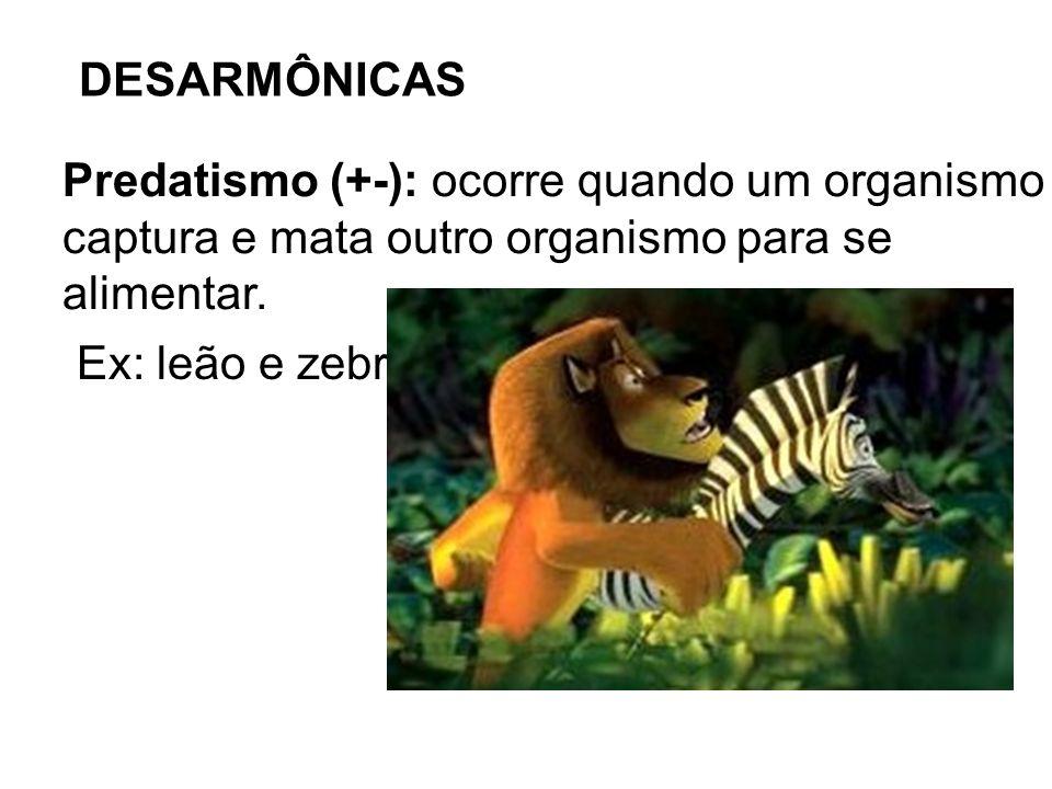 DESARMÔNICASPredatismo (+-): ocorre quando um organismo. captura e mata outro organismo para se. alimentar.