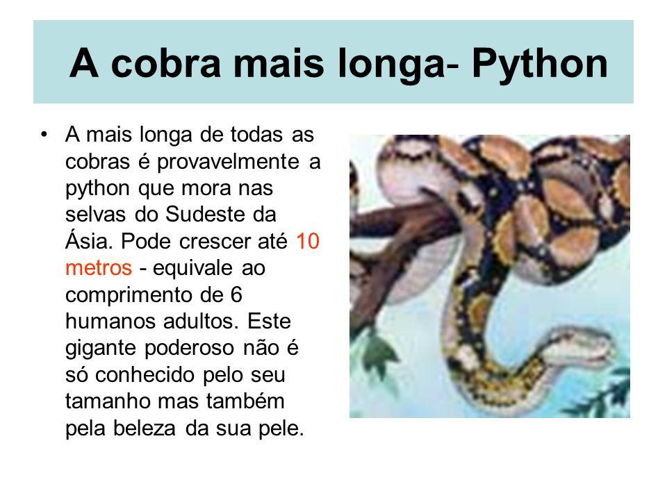 A cobra mais longa- Python